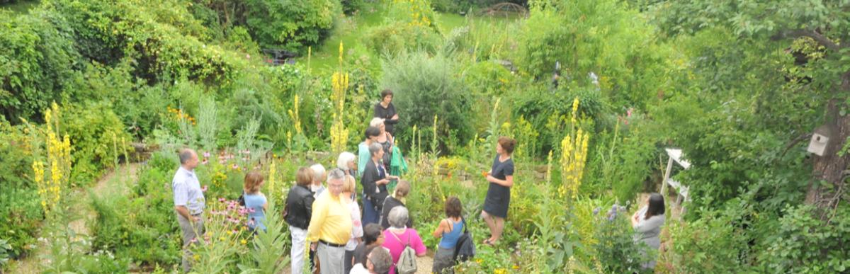 Tag des offenen Bauerngartens mit Kräuterführung – Hofgut Tellmann