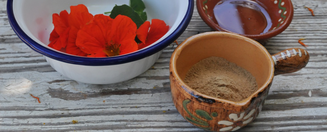Freiburger Phyto Team: Heilpflanzen für die Haut – Hofgut Tellmann