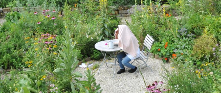 Freiburger Phyto Team: Heilpflanzen für die Atemwege – Hofgut Tellmann