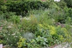 Ein Teil vom Kräutergarten